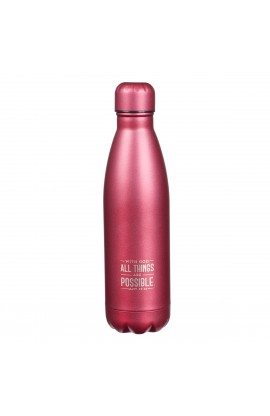 SS Water Bottle All Things Possible