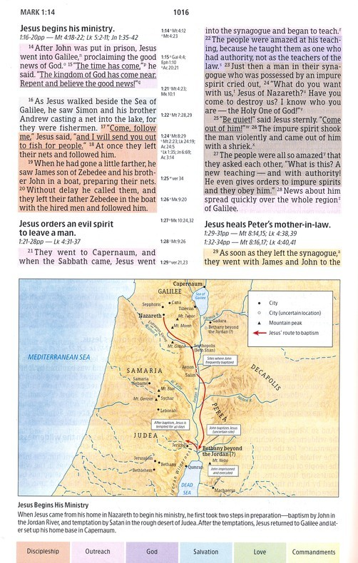 burgundy rainbow index study thumb bible