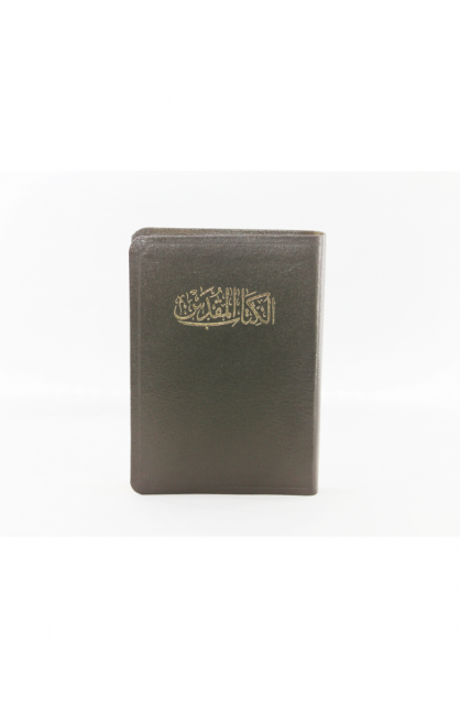 ARABIC BIBLE NVD17