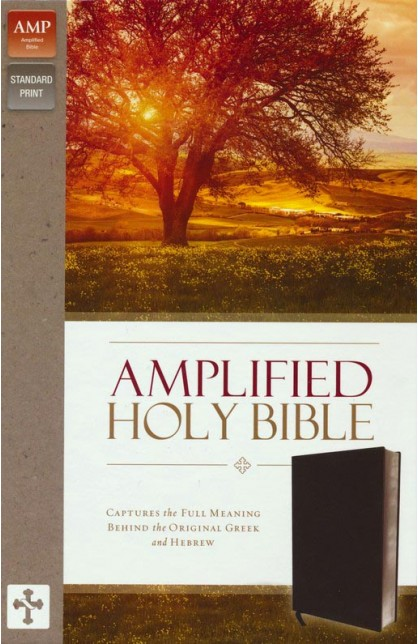 Amplified Holy Bible Thumb Index Black Bonded Leather
