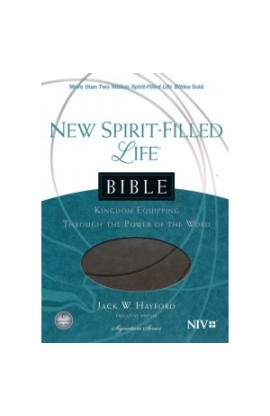 NIV New Spirit Filled Life Bible Imitation Leather Gray