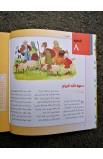 الكتاب المقدس للعائلة 100 خطوة