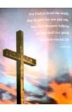 NIV GIFT & AWARD BIBLE BURGUNDY