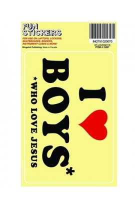 I LOVE BOYS FUN STICKER
