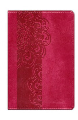 NIV POCKET BIBLE RAZZLEBERRY