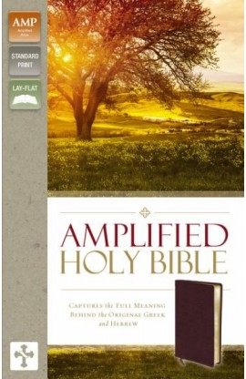 AMPLIFIED HOLY BIBLE BURGUNDY BONDED LEATHER