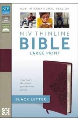 NIV THINLINE BIBLE LARGE PRINT CRANBERRY