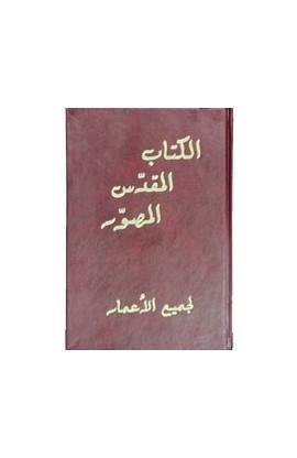 الكتاب المقدّس المصوّر لجميع الأعمار
