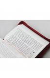 ARABIC BIBLE NVD15ZA