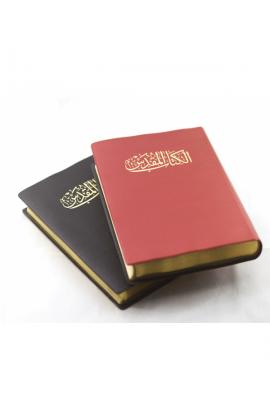 ARABIC BIBLE NVD12PL PEARL VINYL